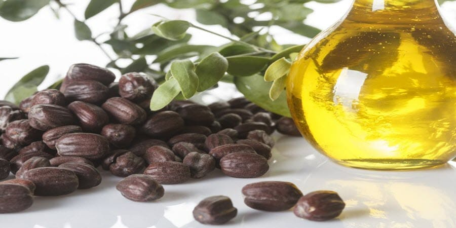 Jojoba Oil For Hair Growth